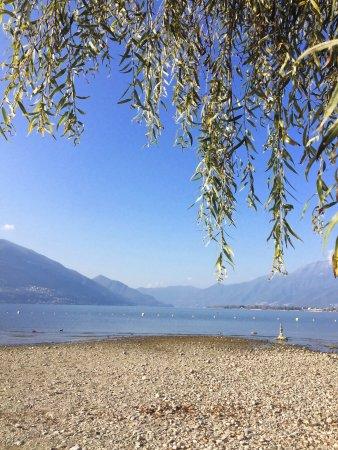 Tenero, Ελβετία: photo0.jpg