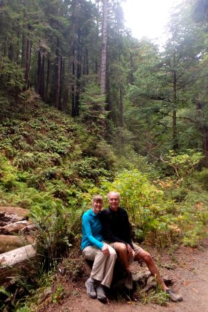 Little River, CA: Hiking the Fern Canyon trail at Van Damme state park that you can access from the hotel.