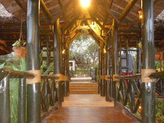 Lake Manyara National Park, Τανζανία: The bridge from hotel to carpark