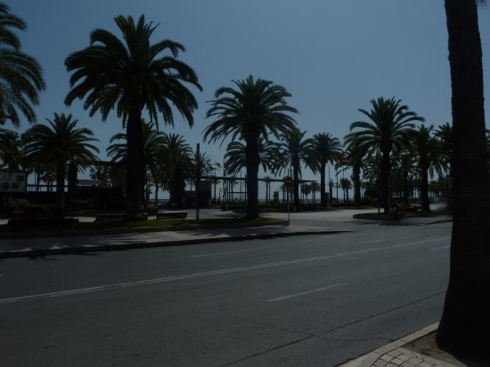 Ponent Beach: Пальмовая аллея в Салоу