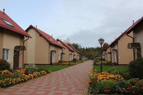 Leningrad Oblast 사진