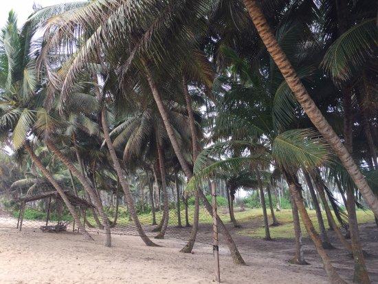 Beyin Beach Resort Photo