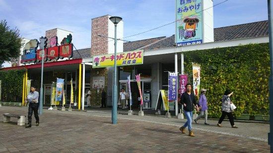 Fujioka, Japan: DSC_1405_large.jpg