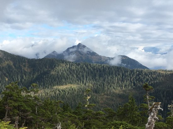 Harbor Mountain Trail: View from one of the saddle ridges along the trail