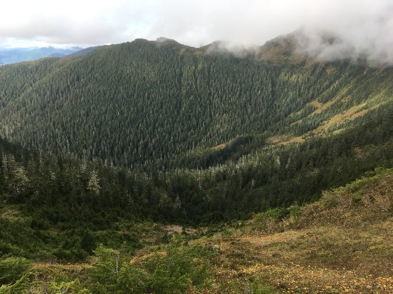 Harbor Mountain Trail: The valley views are spectacular when the fog lifts