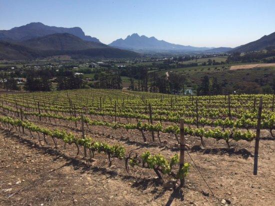 Franschhoek, Sydafrika: View