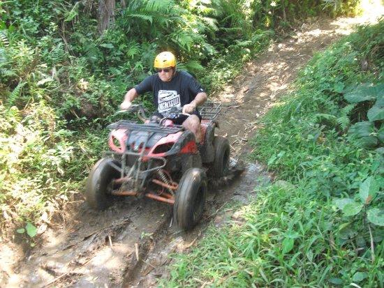 Batukaru Adventures: Great day