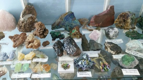 Griffiths' Sea Shell Museum & Marine Display