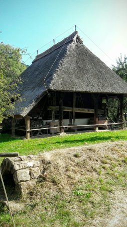 Gutach im Schwarzwald, Duitsland: 20160925_134403_large.jpg