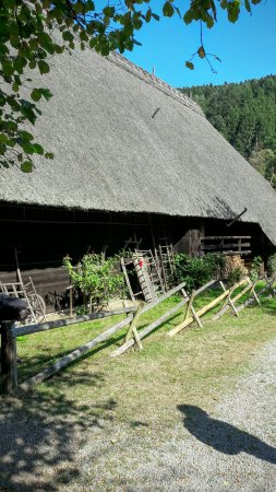 Gutach im Schwarzwald, Duitsland: 20160925_134357_large.jpg