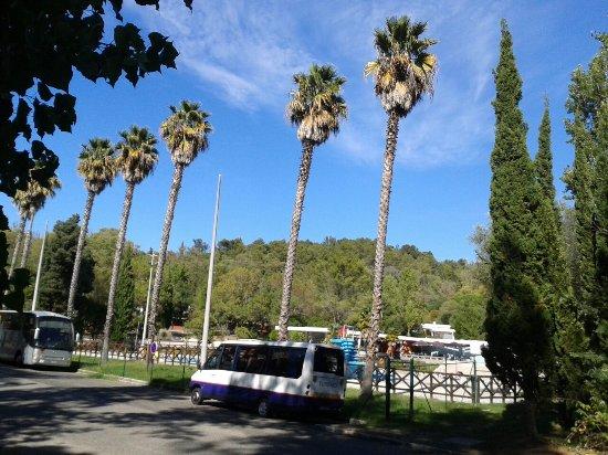 Lisboa Camping & Bungalows: 20160922_155404_large.jpg