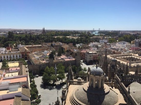 Cathédrale Notre-Dame du Siège de Séville : Widok z dzwonnicy Giralda 1