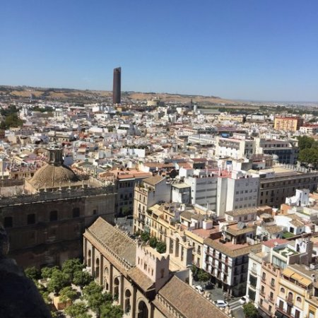 Cathédrale Notre-Dame du Siège de Séville : Widok z dzwonnicy Giralda 4