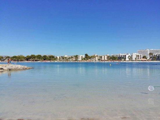 playa de alcudia - Picture of Playa de Alcudia, Port dAlcudia - TripAdvisor