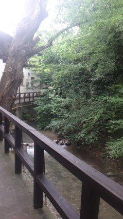 Restaurant Gorets: Можно посидеть на улице, в прохладе деревьев и под шум речки.