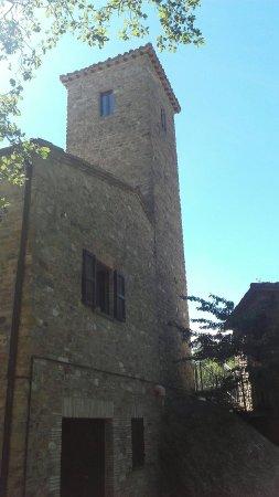 Frontino, Italie : 20160815_050917_large.jpg