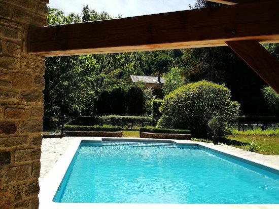 Domaine De La Brugere : Piscine
