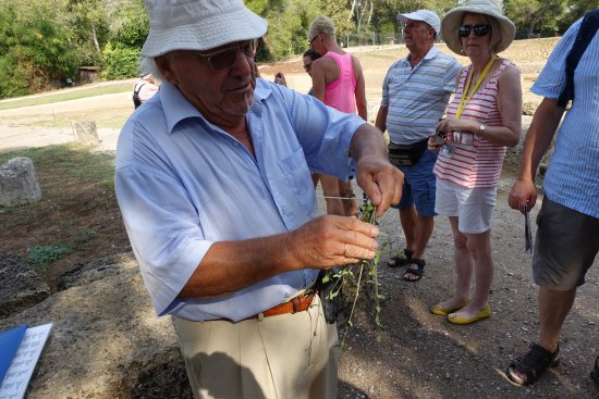Starożytna Olimpia (Archaia Olympia): Our Greek Tourist Guide using an Olive branch to make the winner's crown