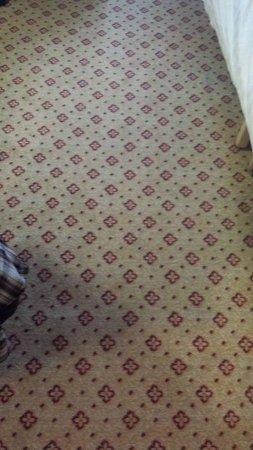 Daresbury, UK: Wet. smelly sticky carpet, should be destroyed