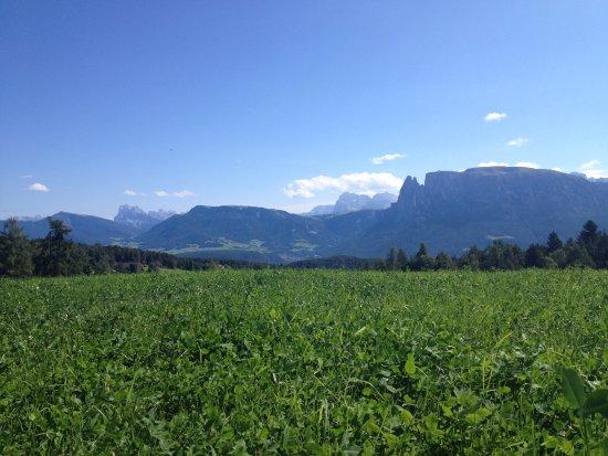Soprabolzano, Italia: Prati verdi, cielo azzurro e stupende montagne