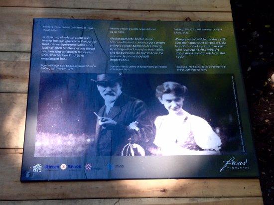 Soprabolzano, Italia: Freud