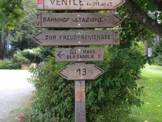 Soprabolzano, Italia: Cartelli lungo il percorso, la Freud promenade è il sentiero n°35