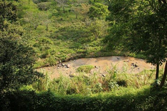 Hillcrest, Zuid-Afrika: River view from veranda of unit 3