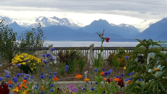 Kachemak Bay State Park: A little rest area as you are just coming into Homer, AK