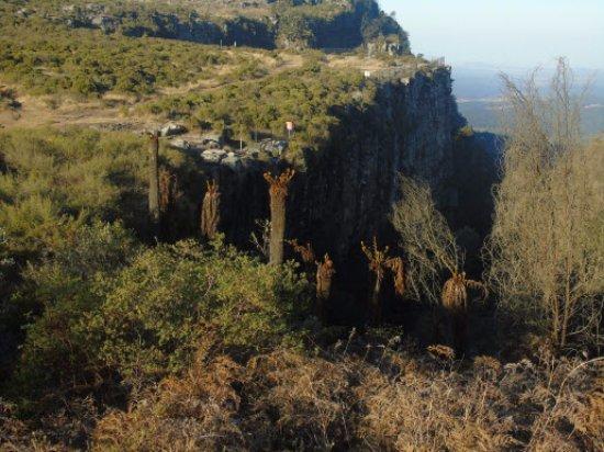 Graskop, Sudáfrica: Vista de la pequeña cascada
