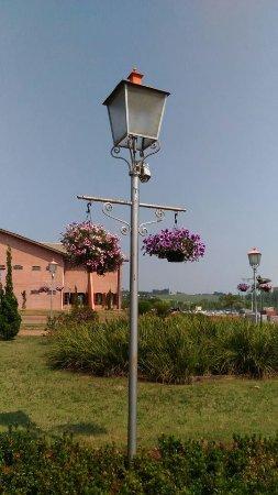 Holambra: Até os postes de luz têm flores!