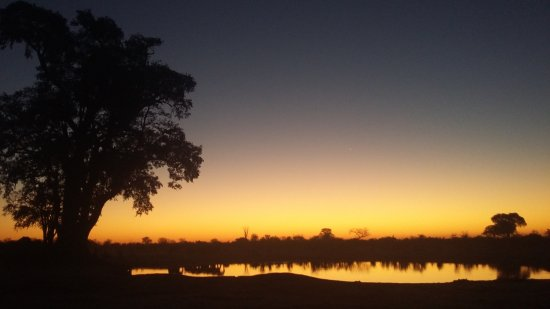Hwange National Park Foto