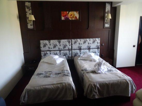 Hotel Piemonte Picture