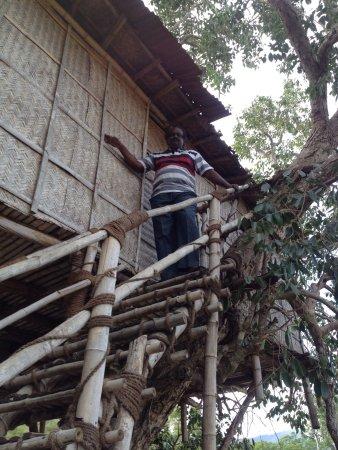 Discovery Village Masinagudi