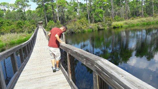 big lagoon state park campground bewertungen fotos pensacola