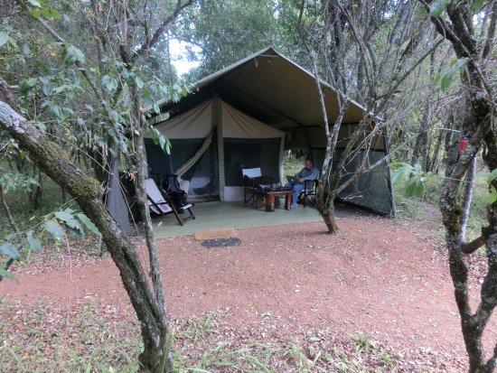 Mara Bush Camp: our tent