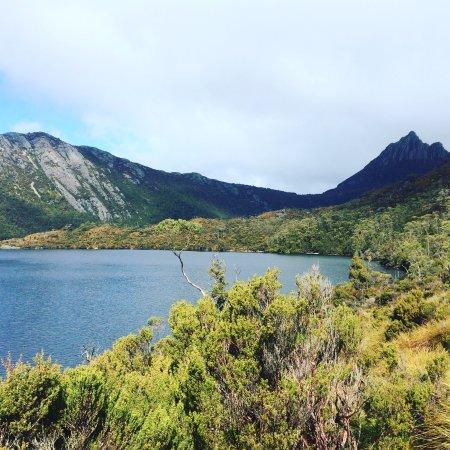 Национальный парк Крейдл-Маунтин - Лейк-Сент-Клер, Австралия: photo1.jpg