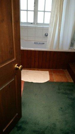 Ham, UK: Carpet on the bathroom floor!