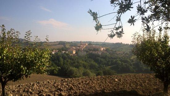 Serrungarina, Italia: Salendo verso Bargni