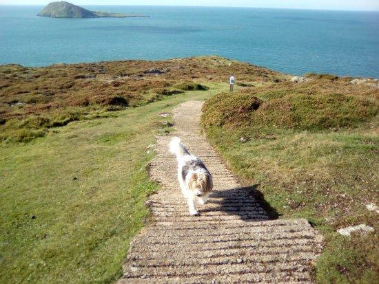 Aberdaron, UK: The path to the beach