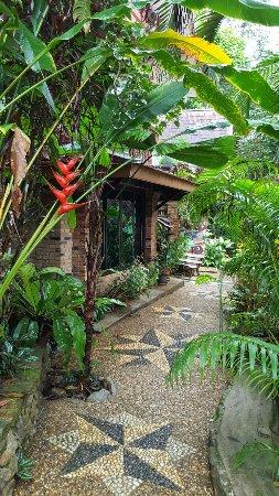 Khao Sok Las Orquideas Resort: 20160925_073849_large.jpg