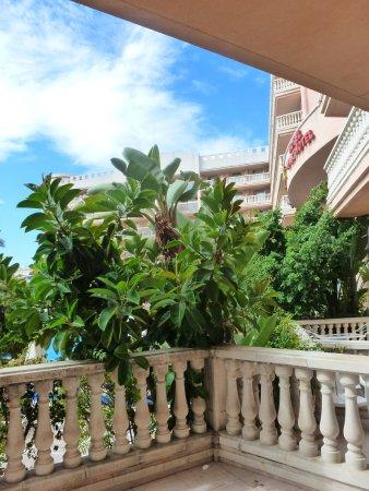 Hotel-Aparthotel Dorada Palace: idem