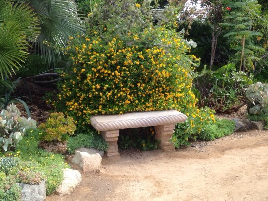 Hours of Operation - Picture of Self Realization Fellowship ...