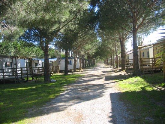 Camping La Massane
