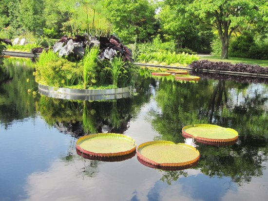 Montreal, Canada: One part of the garden where you can sit and enjoy this beautiful nature creations.