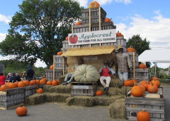 Hampton Falls, NH: Applecrest Farm Orchards