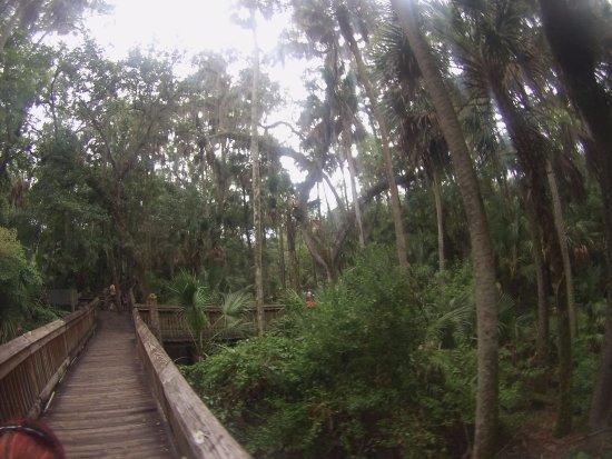 Orange City, FL: beautiful park
