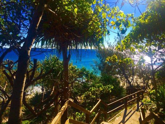 Νησί North Stradbroke, Αυστραλία: photo4.jpg