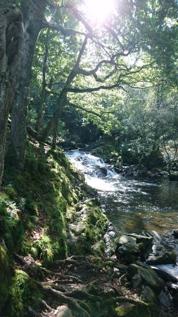 Llanbedr, UK: The falls on the camp site