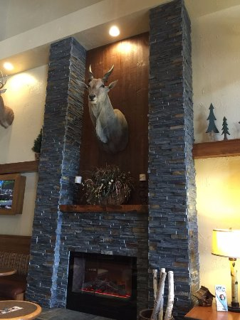 Comfort Inn at Thousand Hills Photo