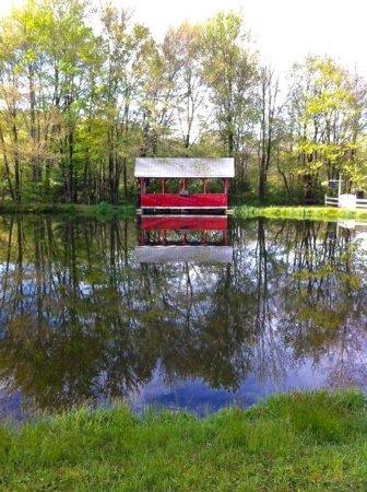 Saylorsburg, Pensylwania: Stone Lake Inn